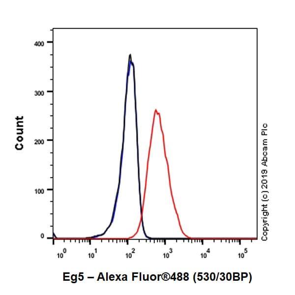 Flow Cytometry (Intracellular) - Anti-Eg5 antibody [EPR23276-52] - BSA and Azide free (ab270754)