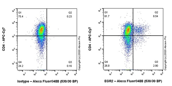 Flow Cytometry - Anti-EGR2 antibody [EPR23228-40] - BSA and Azide free (ab270755)