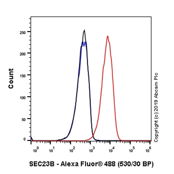 Flow Cytometry (Intracellular) - Anti-SEC23B antibody [EPR22723-24] - BSA and Azide free (ab270756)