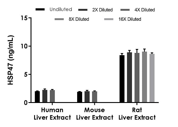 Interpolated concentrations of native HSP47 in human, mouse, and rat liver homogenate extract samples based on a 125 µg/mL extract load.