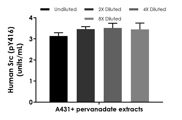 Interpolated concentrations of native Src (pY416) in human A431 cells treated with pervanadate, based on a 125 µg/mL extract load.
