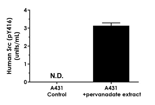 Comparison of native Src (pY416) concentration in treated versus control cell extracts.