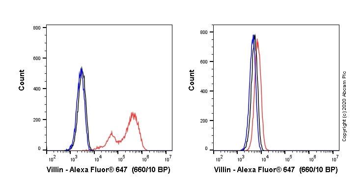 Flow Cytometry - Alexa Fluor® 647 Anti-Villin antibody [SP145] (ab270922)