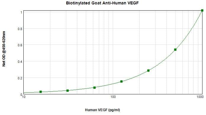 Sandwich ELISA - Biotin Anti-VEGF 165A antibody (ab271201)