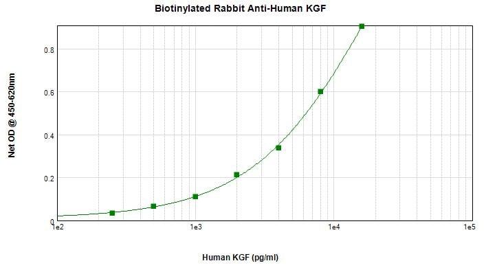 Sandwich ELISA - Anti-KGF antibody (Biotin) (ab271221)