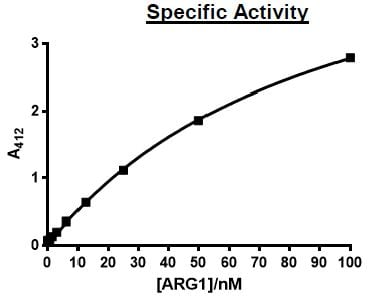 Functional Studies - Recombinant human Liver Arginase protein (Active) (ab271366)