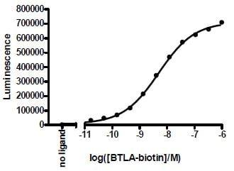 Functional Studies - Recombinant human CD272/BTLA protein (Active) (Biotin) (ab271393)