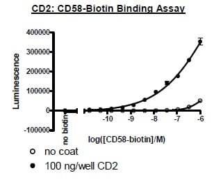Functional Studies - Recombinant Human CD58 protein (Tagged) (Biotin) (ab271442)