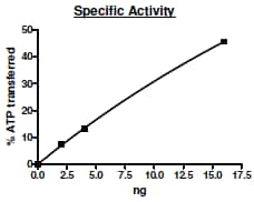 Functional Studies - Recombinant human EGFR (mutated T790 M + L858 R) protein (Active) (ab271495)