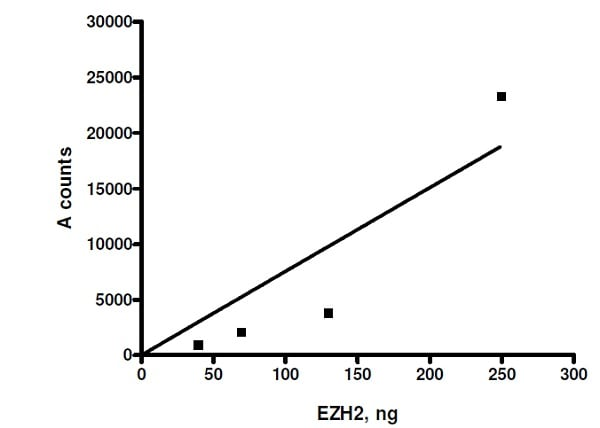 Functional Studies - Recombinant human RbAp48 + EED + SUZ12 + AEBP2 + EZH2 (mutated P132 S) protein (Active) (ab271504)