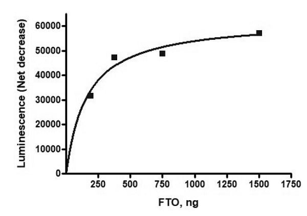 Functional Studies - Recombinant human FTO protein (Active) (ab271525)