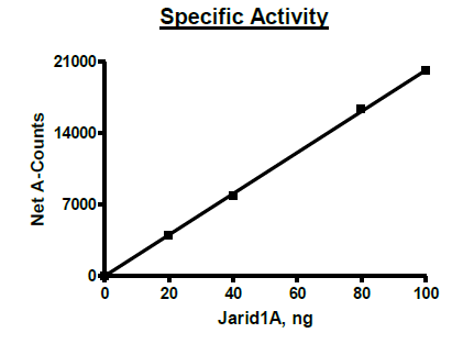 Functional Studies - Recombinant human KDM5A / Jarid1A / RBBP2 protein (Active) (ab271566)