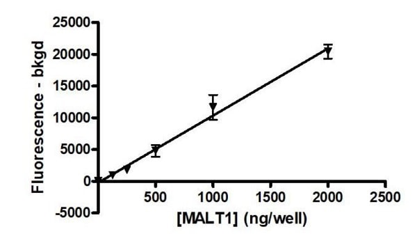 Functional Studies - Recombinant mouse MALT1/MLT protein (Active) (ab271605)