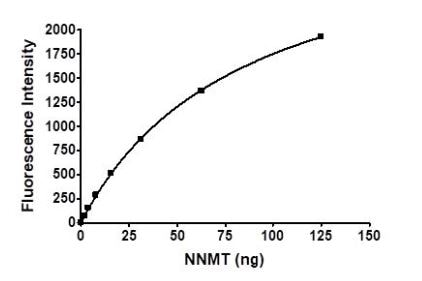 Functional Studies - Recombinant Human NNMT protein (Tagged) (ab271638)