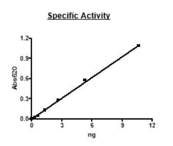 Functional Studies - Recombinant mouse PDE2A protein (Active) (ab271674)