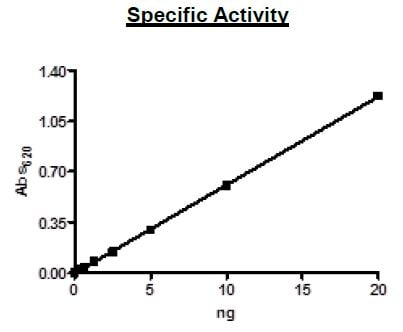 Functional Studies - Recombinant human PDE4D7 protein (Active) (ab271681)