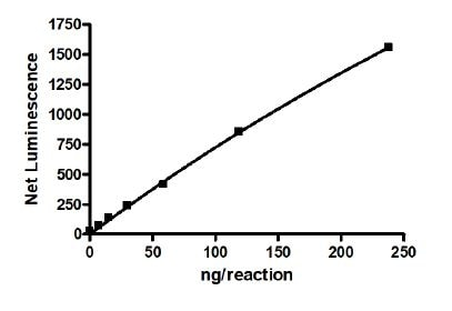 Functional Studies - Recombinant human RIP protein (Active) (ab271732)