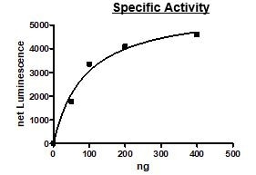 Functional Studies - Recombinant human RIP2 protein (Active) (ab271734)