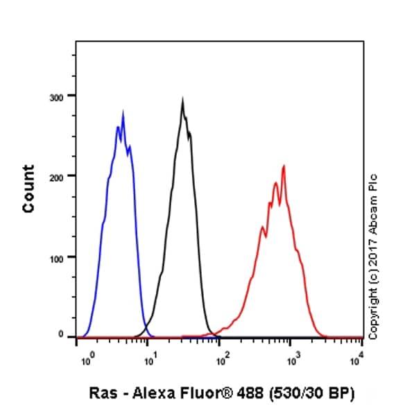 Flow Cytometry - Anti-Ras antibody [EP1125Y] - BSA and Azide free (ab271848)