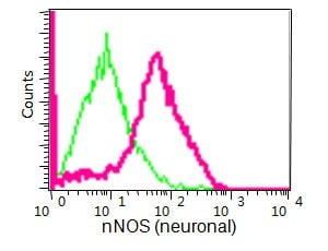 Flow Cytometry - Anti-nNOS (neuronal) antibody [EP1855Y] - BSA and Azide free (ab271857)