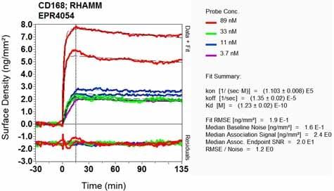Other - Anti-CD168 antibody [EPR4054] - BSA and Azide free (ab271887)