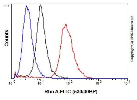 Flow Cytometry (Intracellular) - Anti-RhoA antibody [EPR18134] - BSA and Azide free (ab271951)