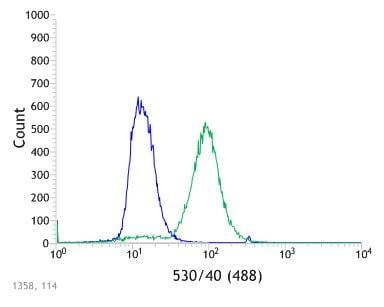 Flow Cytometry - Anti-Thrombomodulin antibody [SP309] - BSA and Azide free (ab272018)