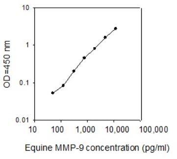 Horse MMP-9 Standard Curve