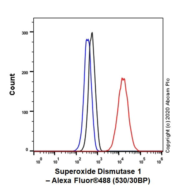 Flow Cytometry (Intracellular) - Anti-Superoxide Dismutase 1 antibody [EPR23549-163] - BSA and Azide free (ab272048)