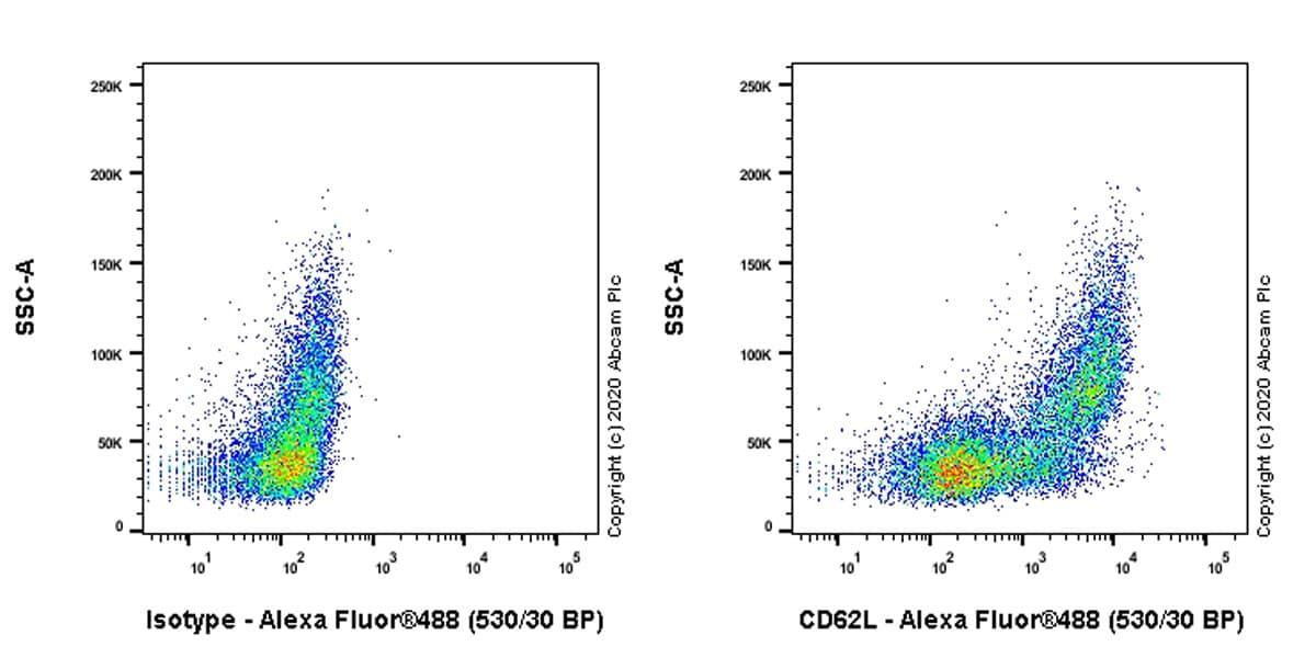 Flow Cytometry - Anti-CD62L antibody [EPR23565-109] - BSA and Azide free (ab272170)