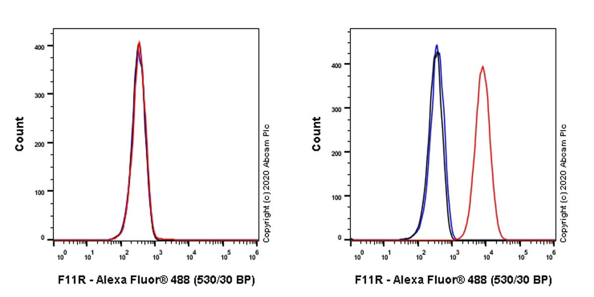 Flow Cytometry - Anti-Junctional Adhesion Molecule 1/JAM-A antibody [EPR23246-275] - BSA and Azide free (ab272172)