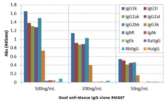 ELISA - Goat monoclonal [RMG07] Anti-Mouse IgG H&L (Biotin) (ab272182)