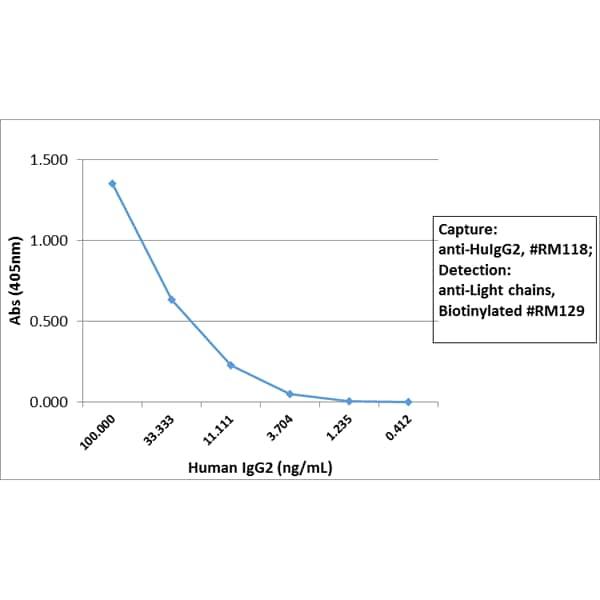 Sandwich ELISA - Rabbit monoclonal RM118 Anti-Human IgG heavy chain (Biotin) (ab272184)