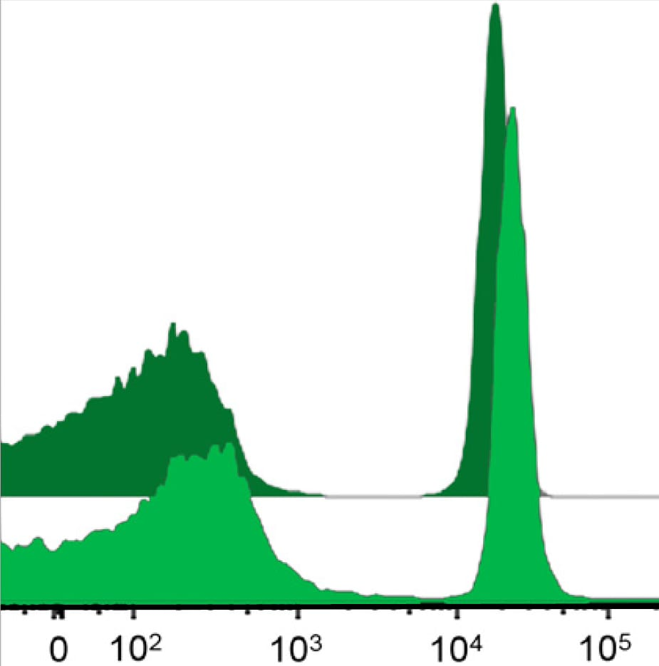 Brightness compared to directly conjugated antibodies