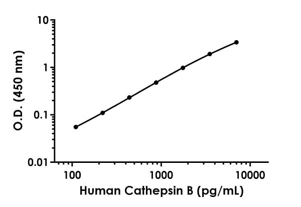 Example of human Cathepsin B standard curve in Sample Diluent NS.