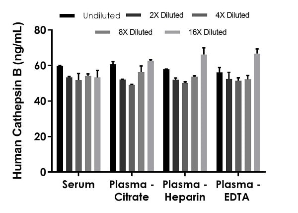 Interpolated concentrations of native Cathepsin B in human serum and plasma samples.