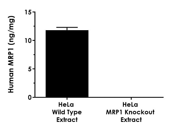 Interpolated concentrations of native MRP1 in human control wild type HeLa cell and MRP1 knockout HeLa cell based on 200 µg/mL extract loads.