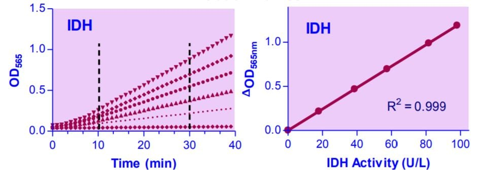 Isocitrate Dehydrogenase Assay Kit Titration Curves