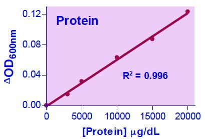Protein Standard Curve