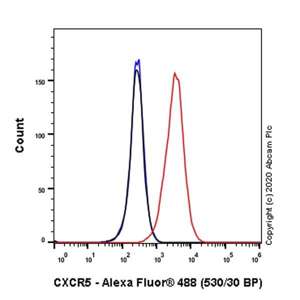 Flow Cytometry - Anti-CXCR5 antibody [EPR23463-30] - BSA and Azide free (ab272936)
