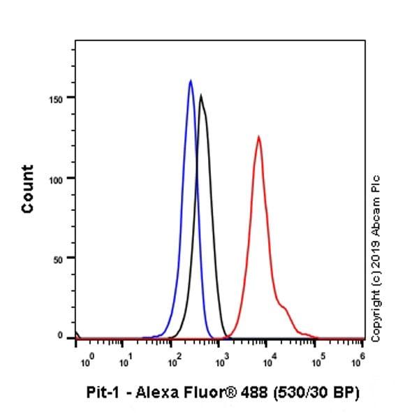 Flow Cytometry - Anti-Pit1 antibody [EPR23555-203] (ab273048)