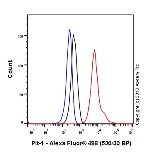Flow Cytometry (Intracellular) - Anti-Pit1 antibody [EPR23555-203] - BSA and Azide free (ab273057)