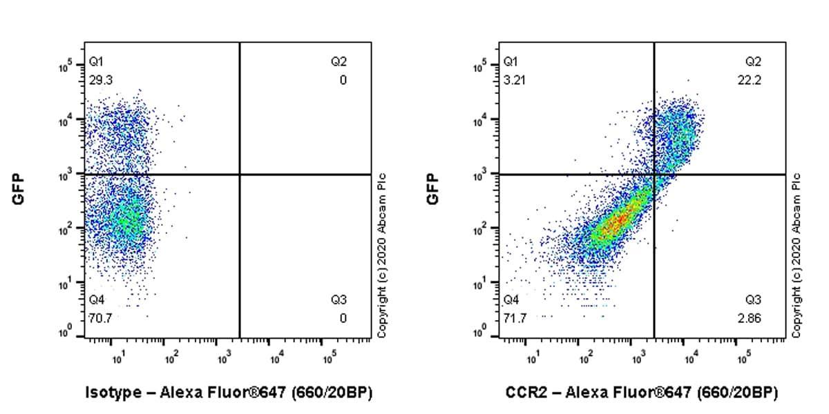 Flow Cytometry - Anti-CCR2 antibody [EPR20844-15] - BSA and Azide free (ab273061)