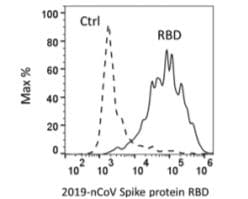 Flow Cytometry - Recombinant SARS-CoV-2 Spike Glycoprotein RBD (Active) (ab273065)
