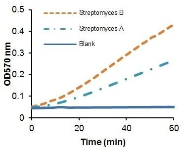 Kinetic measurement of Glucose Isomerase activity from Streptomyces Lysates.