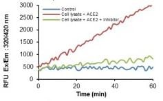 Spiked ACE2 activity and inhibition measured in HEK-293 cell lysate