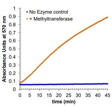 Methyltransferase activity curve