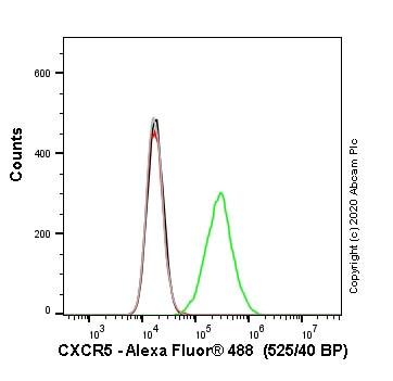 Flow Cytometry - Human CXCR5 knockout Raji cell line (ab273380)