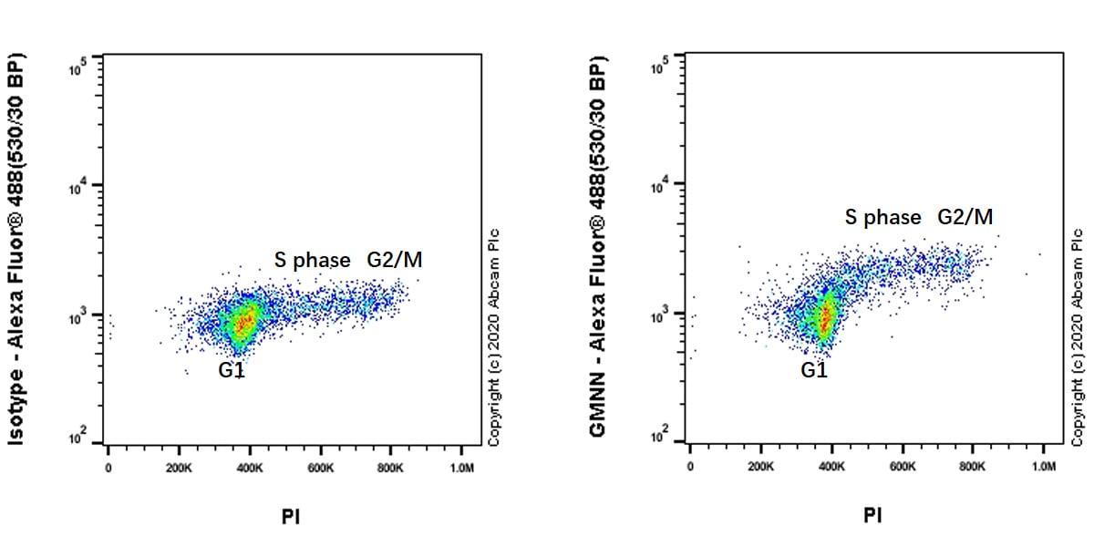 Flow Cytometry - Anti-Geminin antibody [EPR23754-87] - BSA and Azide free (ab273633)