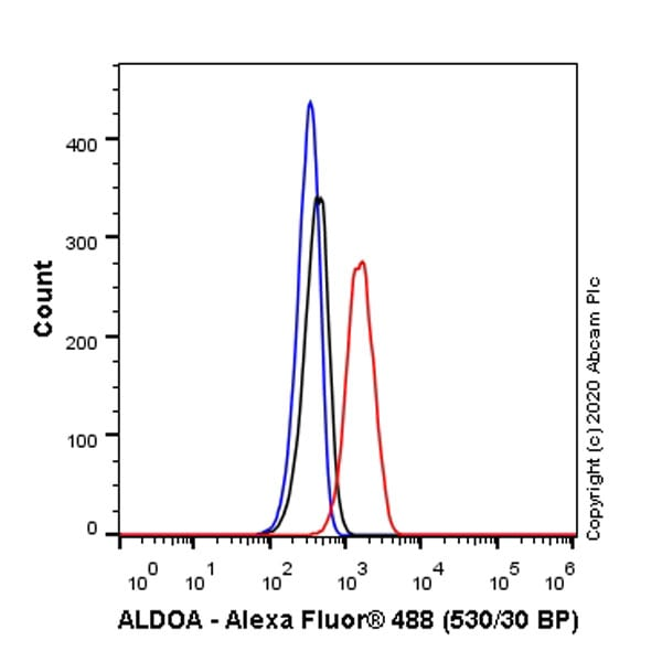 Flow Cytometry - Anti-Aldolase antibody [EPR23181-39] - BSA and Azide free (ab273636)